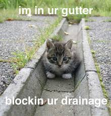 blockinyourdrainage